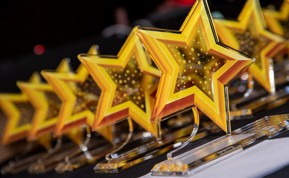 Des lekerman wins Computing award